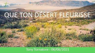 Que ton désert fleurisse !